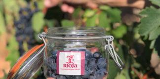 controles de maduración de la uva