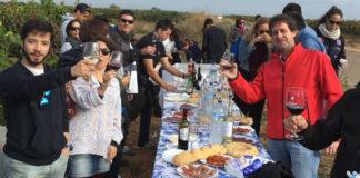 Rutas del Vino de España