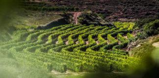Rioja blindasu potencial productivo