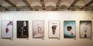 fotografía El Rioja y los 5 sentidos