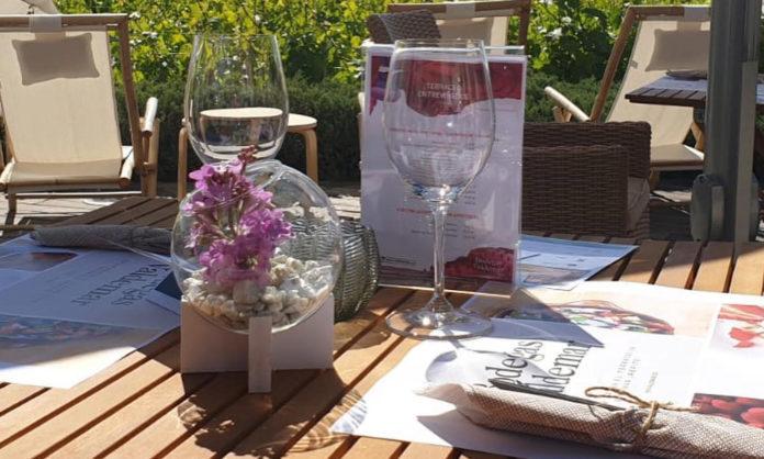 Almuerzo en el viñedo