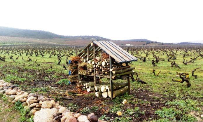 Bodegas La Rioja Alta viñedos