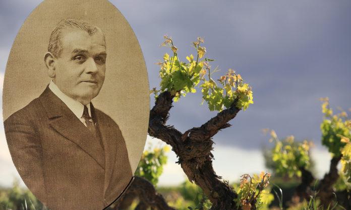 propiedades saludables del vino