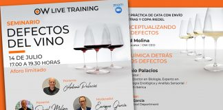 Seminario defectos del vino