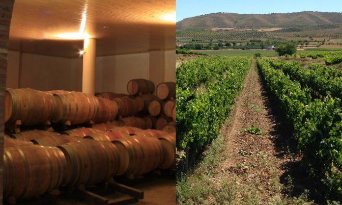 Bodegas Alonso González y Bodegas Lauwa en Bodegas Familiares de Rioja