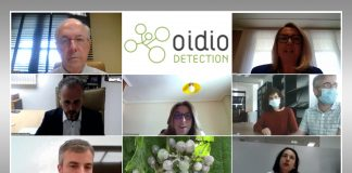 proyecto 'Oídio Detection'
