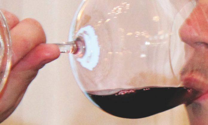 El mundo del vino a sorbos