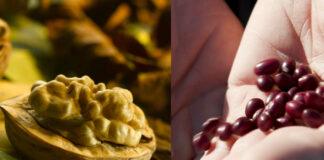 Alimentos de La Rioja