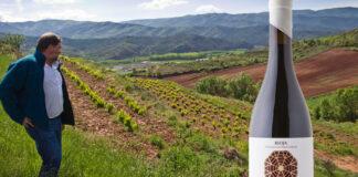 vinos de Viñedo Singular de Rioja