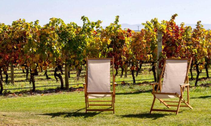 sorteo visitas Bodegas Familiares de Rioja