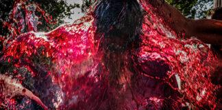 Concurso de Fotografía 'El Rioja y los 5 Sentidos'
